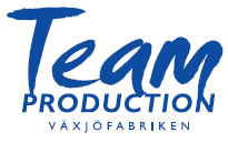 teamproductionbild